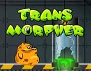 Transmorpher 1