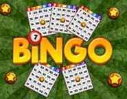 Bingo Revealer